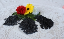 Black Raisins_2