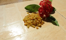 Golden Raisins_2